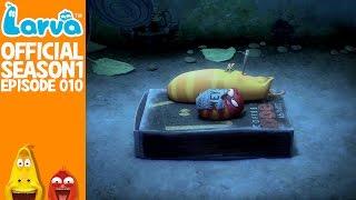 official snoring - larva season 1 episode 10