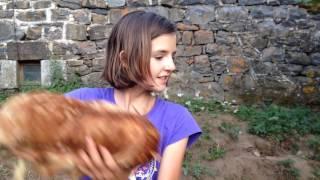 elle endort une poule