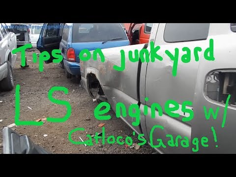 Tips on finding LS engines at a junkyard w/ Catloco's Garage