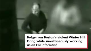 Meet the mob hitman suspected of killing Whitey Bulger