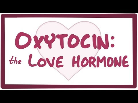 Oxytocin: The reason we fall in love