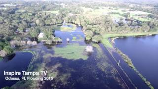 Odessa, FL Flooding 2015