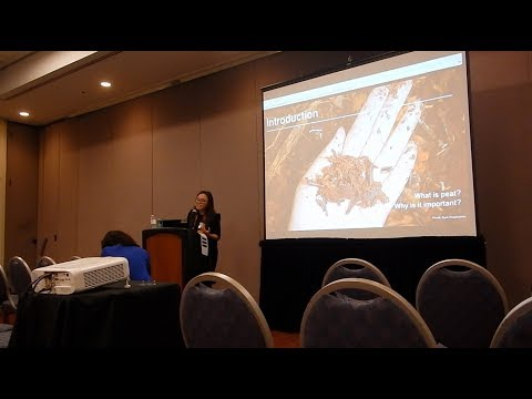 "Presentation ""The Economics of Peatland Restoration in Central Kalimantan, Indonesia"""