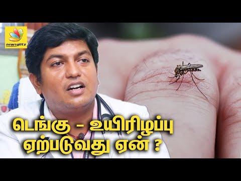 Doctor Hari Shankar explains death due to DENGUE fever : Prevention and Precaution   Tamil Interview