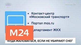 Смотреть видео Куда обращаться с жалобами на обледеневшие тротуары и заснеженные дворы - Москва 24 онлайн