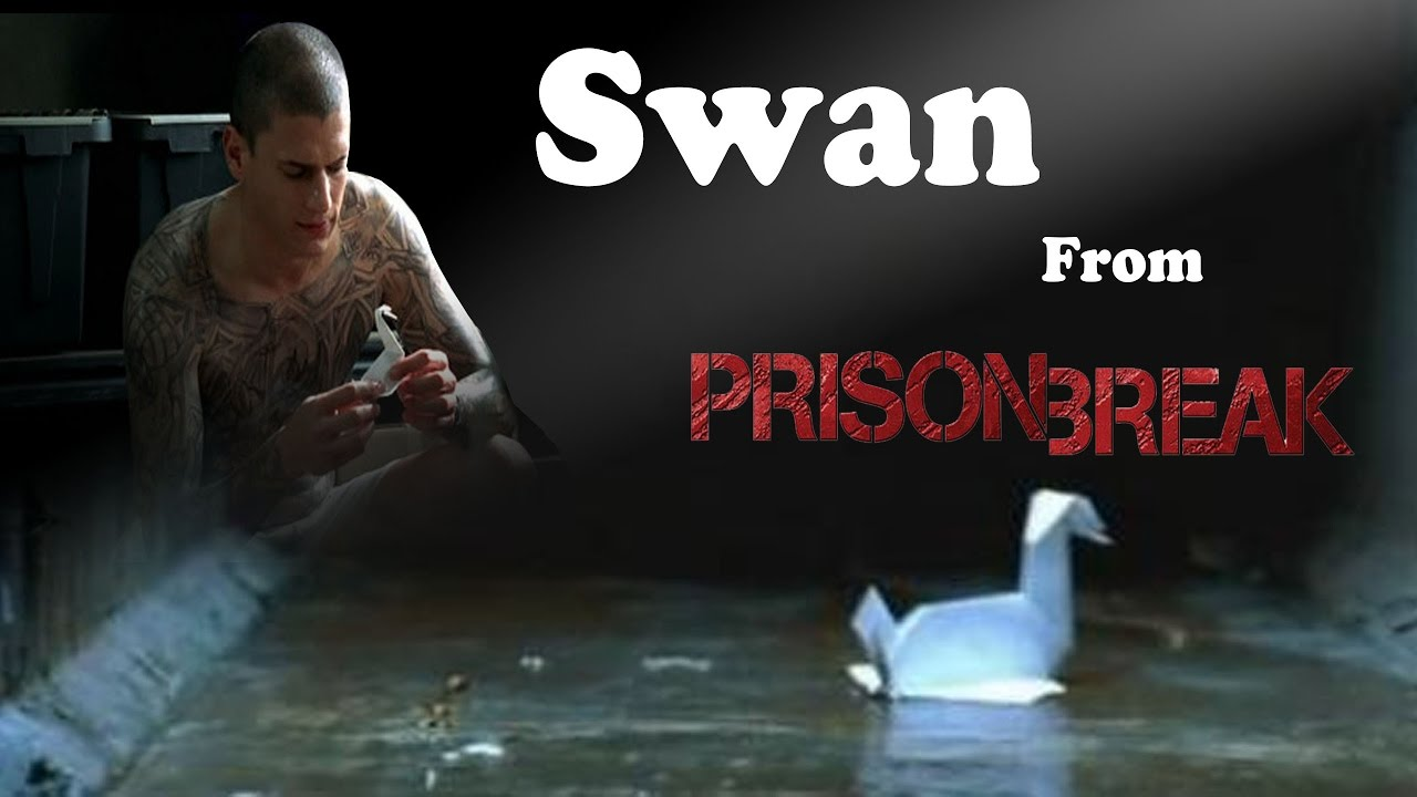 prison break origami swan youtube
