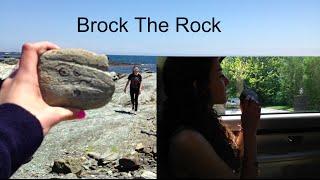 Pet Rock Commercial