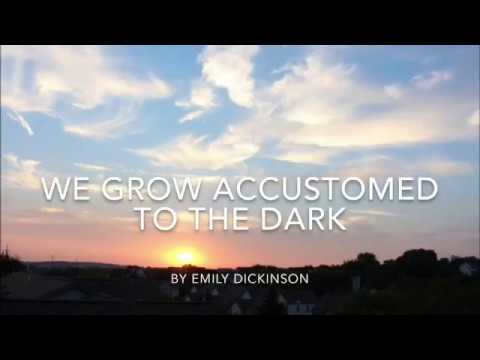 """We Grow Accustomed To the Dark"""