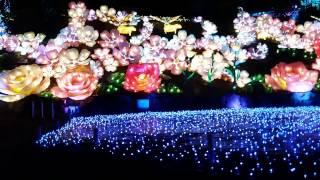 Shizuoka, Izu, Granpal park winter illumination 2016.