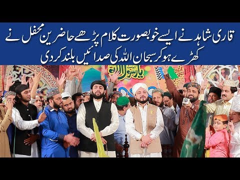 Qari Shahid Mehmood Qadri-Complete Mehfil | All New Best Naats | Qari Shahid Amazing Mehfil e Milad