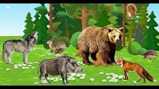 Дикие животные на английском языке с транскрипцией с произношением и переводом видео