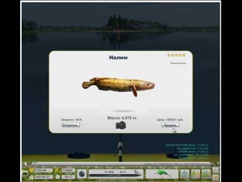 трофейная рыбалка как поймать налима