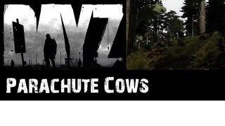 ARMA2 DAYZ: Parachute Cows [Finnish] HD