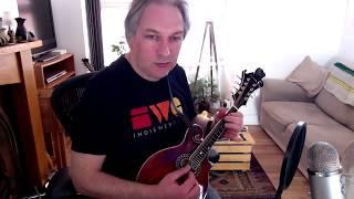 The Drunken Gauger (set dance) on mandolin