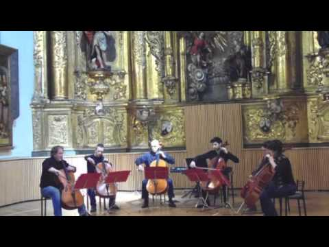 """HelloCello! Ensemble plays """"Going Home"""" (six cellos) of Mark Knopfler / Dire Straits"""