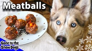 Homemade Meatballs for Dogs | DIY Dog Treats Recipe 92 | Homemade Dog Treats