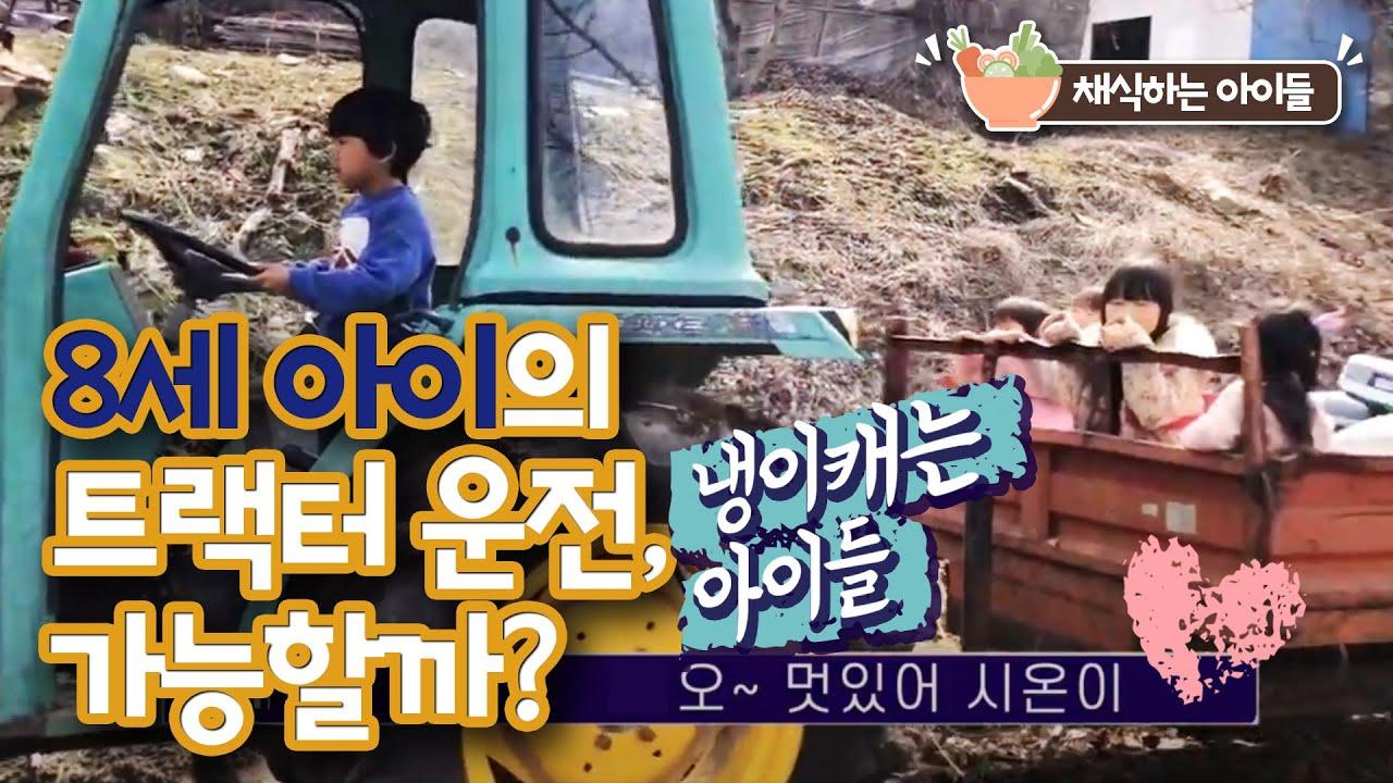 [채식하는 아이들] 8세 아이의 트랙터 운전, 가능할까? 냉이캐는 아이들