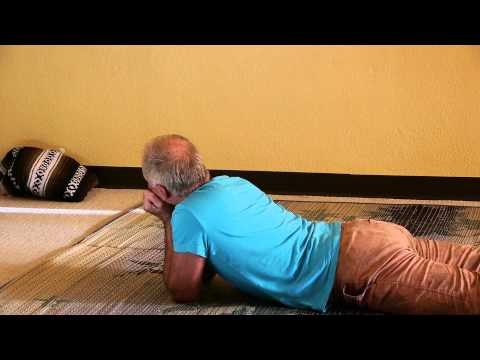 """Erhard's """"Sphynx Plus"""": A Somatic Movement Flow for the Entire Spine"""