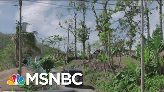 Puerto Rico Still Without Power Three Months After Hurricane Maria | Velshi & Ruhle | MSNBC