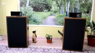 Широкополосная акустика на 4ГД-35
