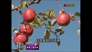 【蘋果公園採蘋果】 弘前市大字清水富田字寺沢125番地.