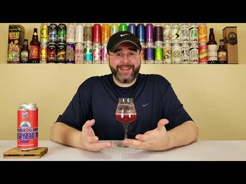 Slushy XL (Strawberry Blueberry) | 450 North Brewing Company | Beer Review | #181