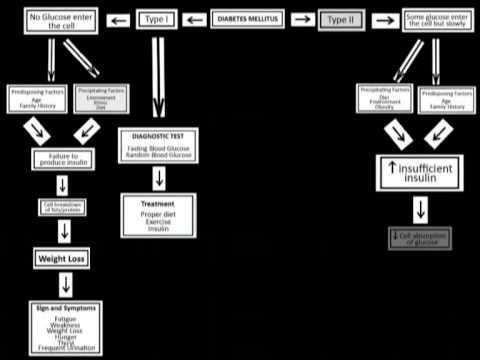 Concept Mapping Diabetes Mellitus Youtube