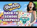 Shopkins Back To School Surprise Box From Moose Toys