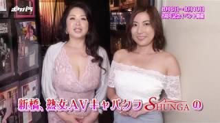 【ポケパラ】シュンガ [新橋/キャバクラ] - お店PR