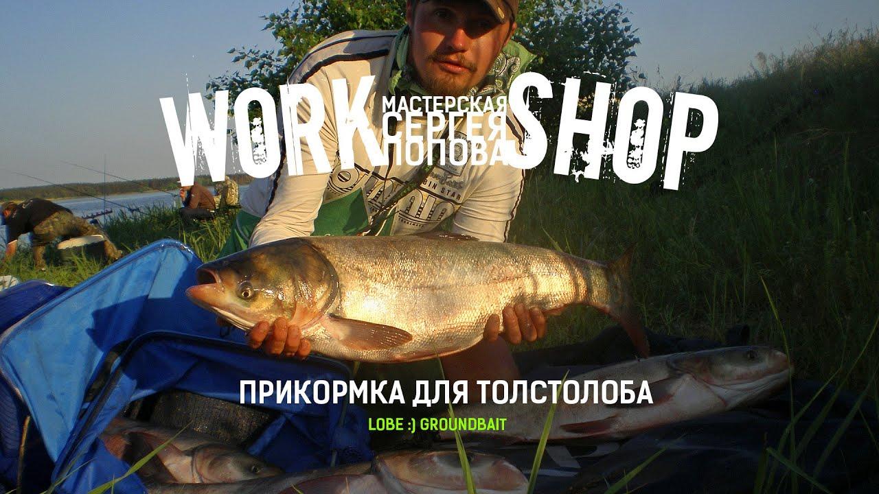 прикормка для толстолоба fish dremel