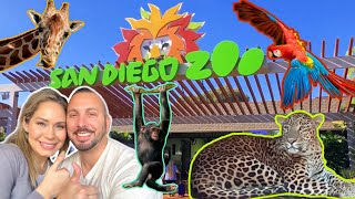 Things to do at the SAN DIEGO ZOO