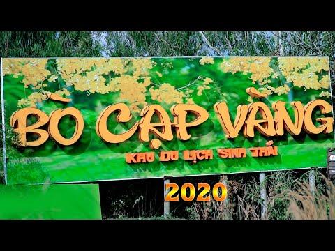 Khu Du Lịch Sinh Thái Bò Cạp Vàng 2020