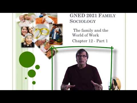 SteveMillers Family Sociology Family and the Work World P1 W18