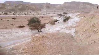 שיטפון שיטפונות ב ערבה ה תיכונה נגב דרום מזג אוויר גשם נחל צופר ו נחל ברק
