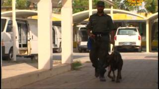 Serving With Honor: The Abu Dhabi Police Dog Section