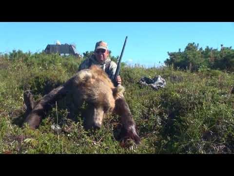 Extreme Bear hunting in Russia   The Kamchatka Peninsula Adventures