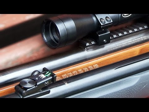 Air Rifle Scope VS Iron Sights
