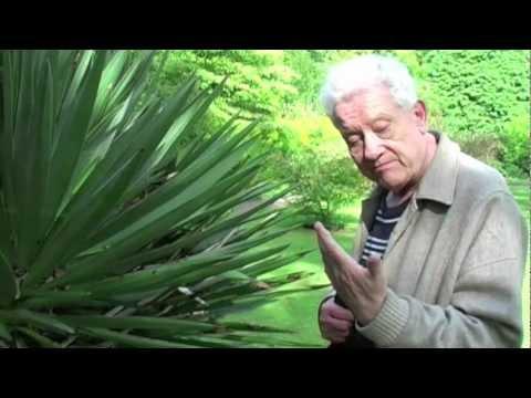 Len Gun visits The Botanical Gardens, Bath - HD