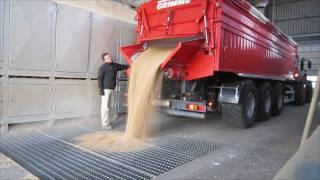 Grimme Multitrailer 350 transportiert Weizen