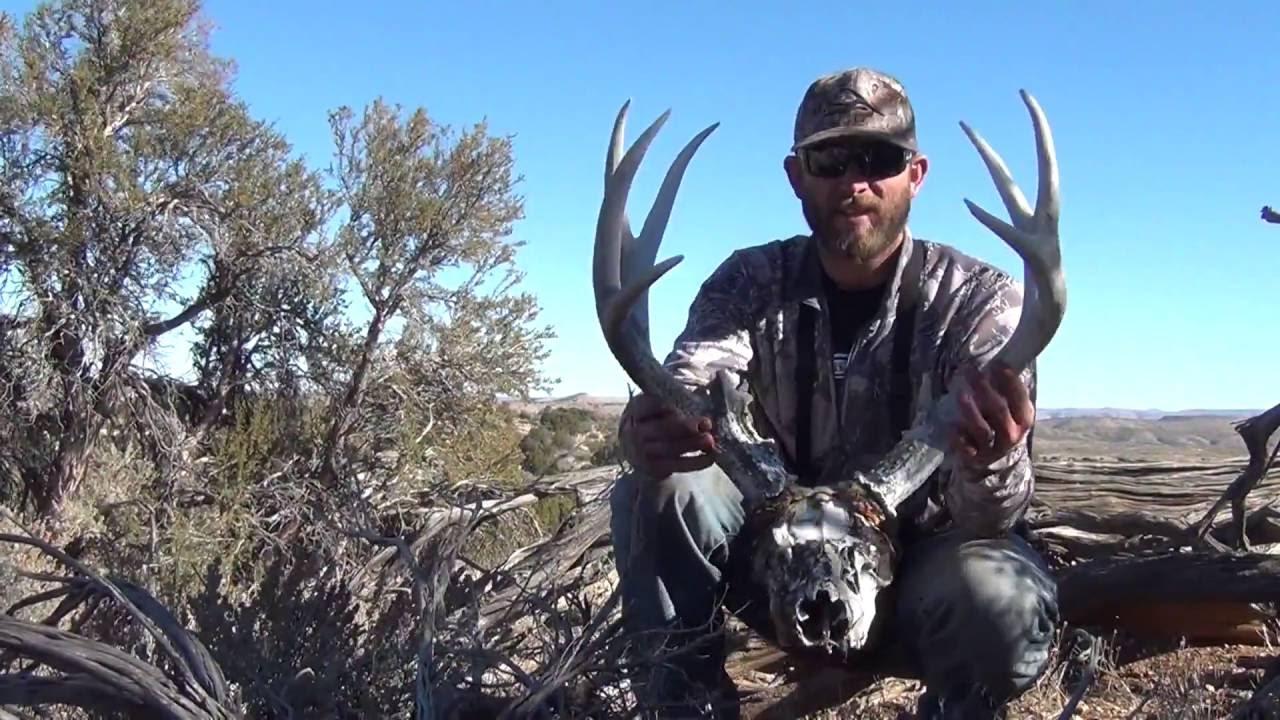 Mule Deer Amp Elk Shed Hunting Antler Trader Doovi