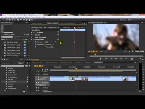 Adobe Premiere Tutorial: Using Video Effects