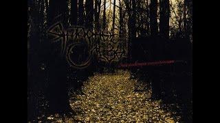 Янтарные Слёзы - Оставив Слёзы (альбом)
