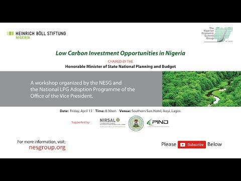Workshop on Low Carbon Investment Program
