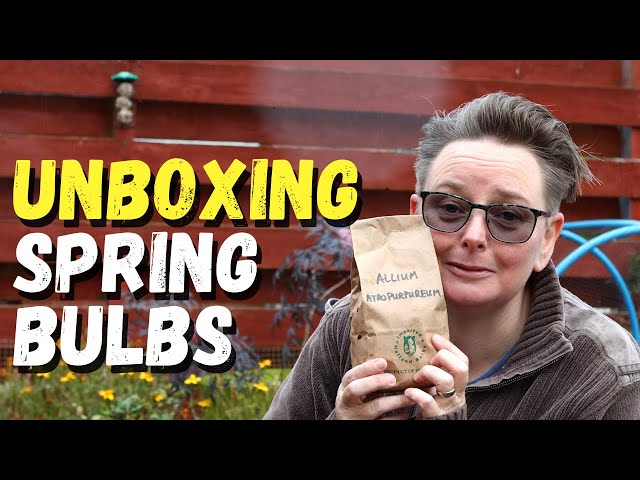 Unboxing my spring bulb haul  |  Tulips, Alliums and Daffodils