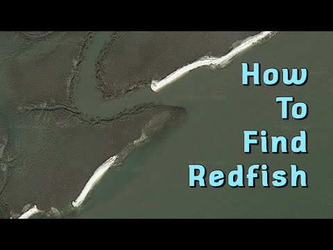 How To Find Redfish