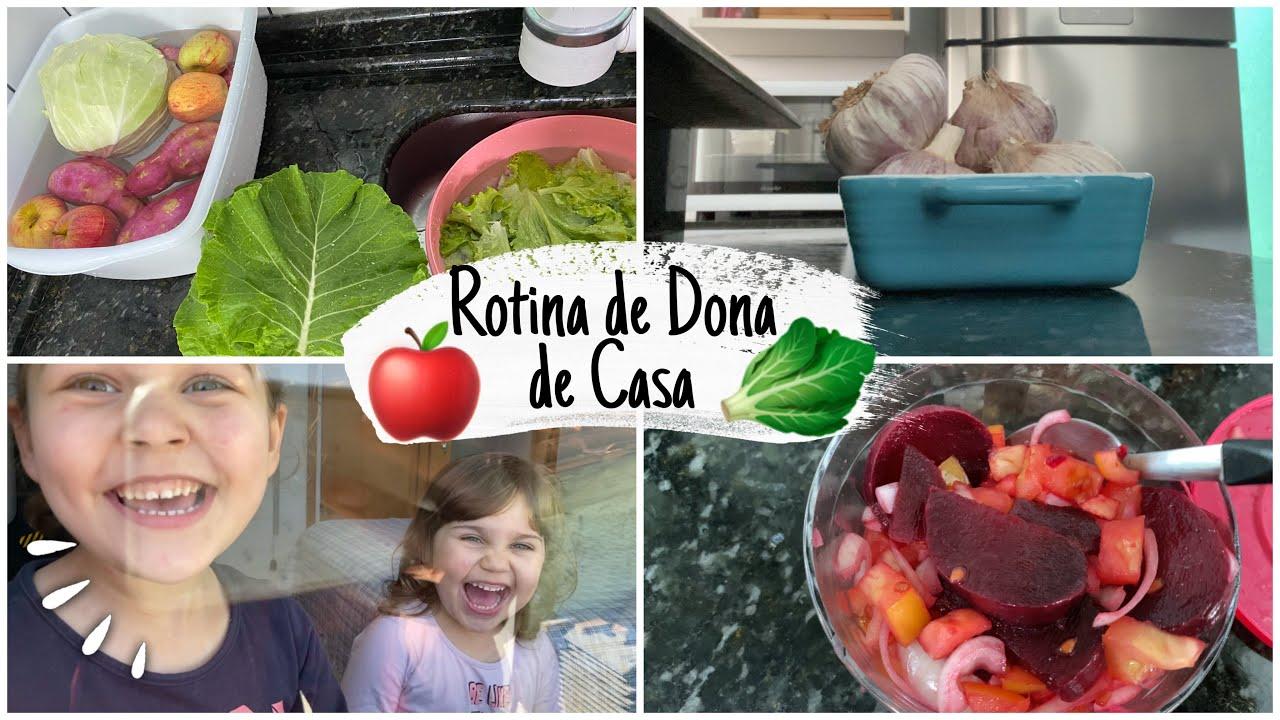 VLOG ROTINA DIÁRIA DE DONA DE CASA | HIGIENIZANDO AS FRUTAS E LEGUMES