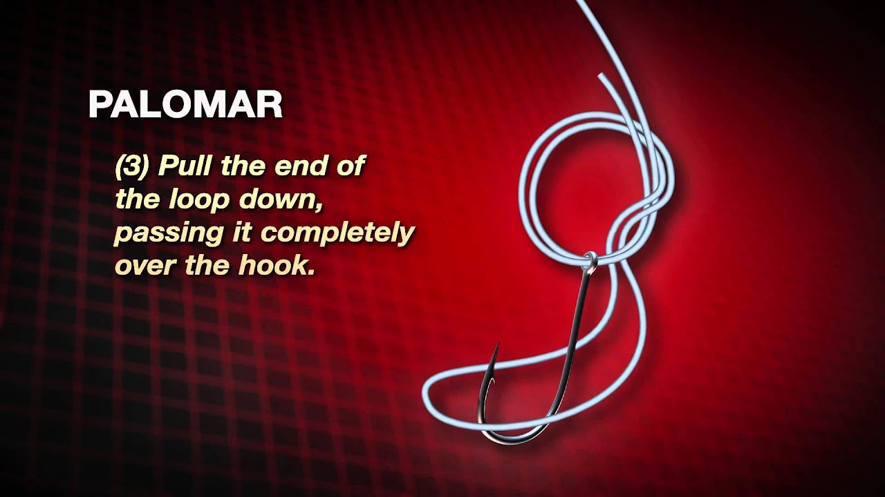 how to tie a palomar knot by abu garcia [ 1280 x 720 Pixel ]