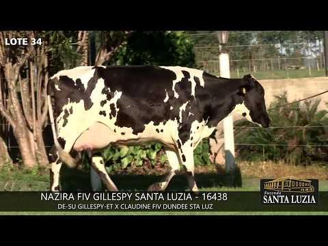 SANTA LUZIA   LOTE 34