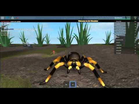 Roblox Ant Simulator- Can the Spider Come Out to Play?