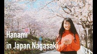 SAKURA 🌸Cherry Blossom in Japan | Hanami spots in Nagasaki | 花見 桜吹雪